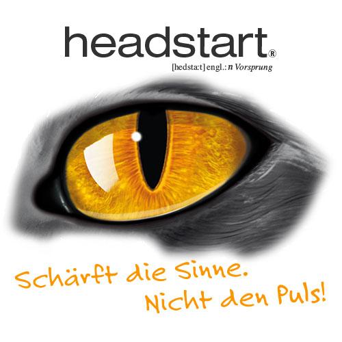Sponsor Logo Headstart